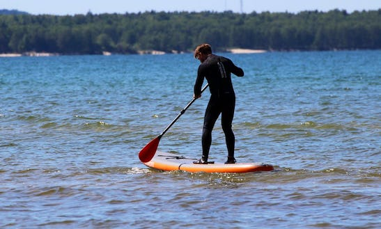 Enjoy Stand Up Paddleboard Rentals And Tours In Tallinn, Estonia