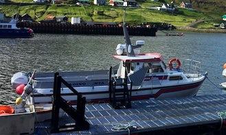 Enjoy Sightseeing in Vestmanna, Streymoy on Barbara Motor Yacht
