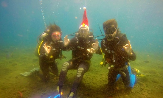 Enjoy Diving Courses In Bali, Indonesia