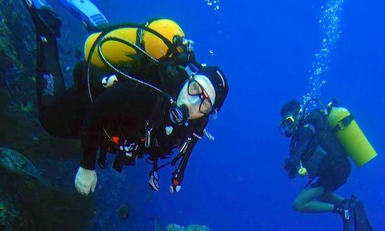 Enjoy Diving Courses In Tombariri, Indonesia