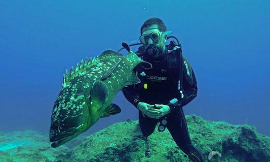Enjoy Scuba Diving In Muğla, Turkey
