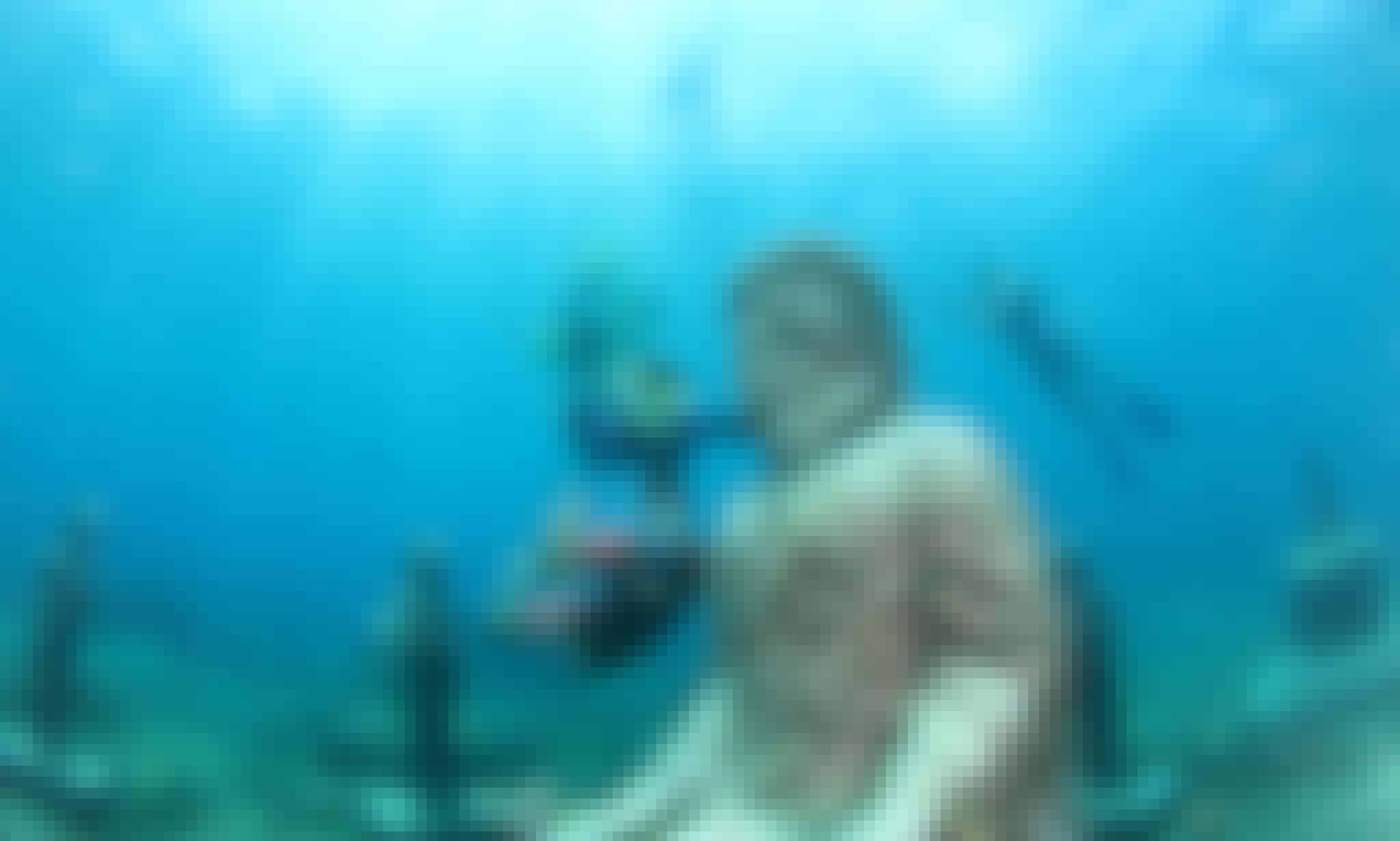 Explore Kuta, Bali on a Scuba Diving Trip