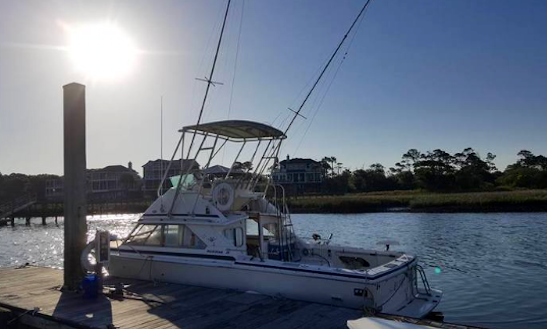 28' Bertram Fly Bridge Sport Fisherman Yacht Rental In Folly Beach, South Carolina