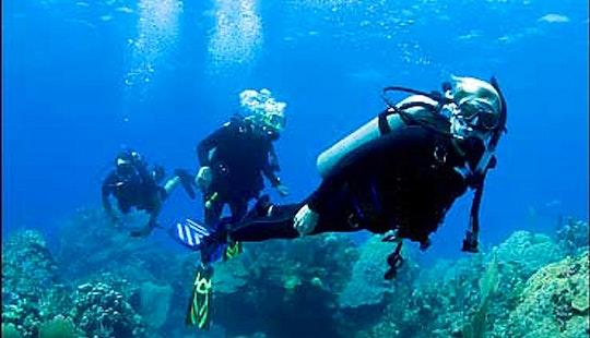 Enjoy Diving In Jatiasih, Indonesia