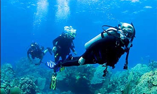 Enjoy Diving In Jatiasih, Indonesia