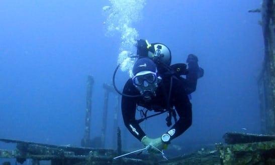 Enjoy Diving Trips And Courses In Gerokgak, Bali