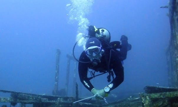 Enjoy Diving Trips and Courses in Gerokgak, Bali