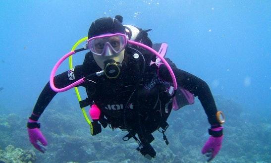 Enjoy Diving Trips In Komodo, Nusa Tenggara Timur