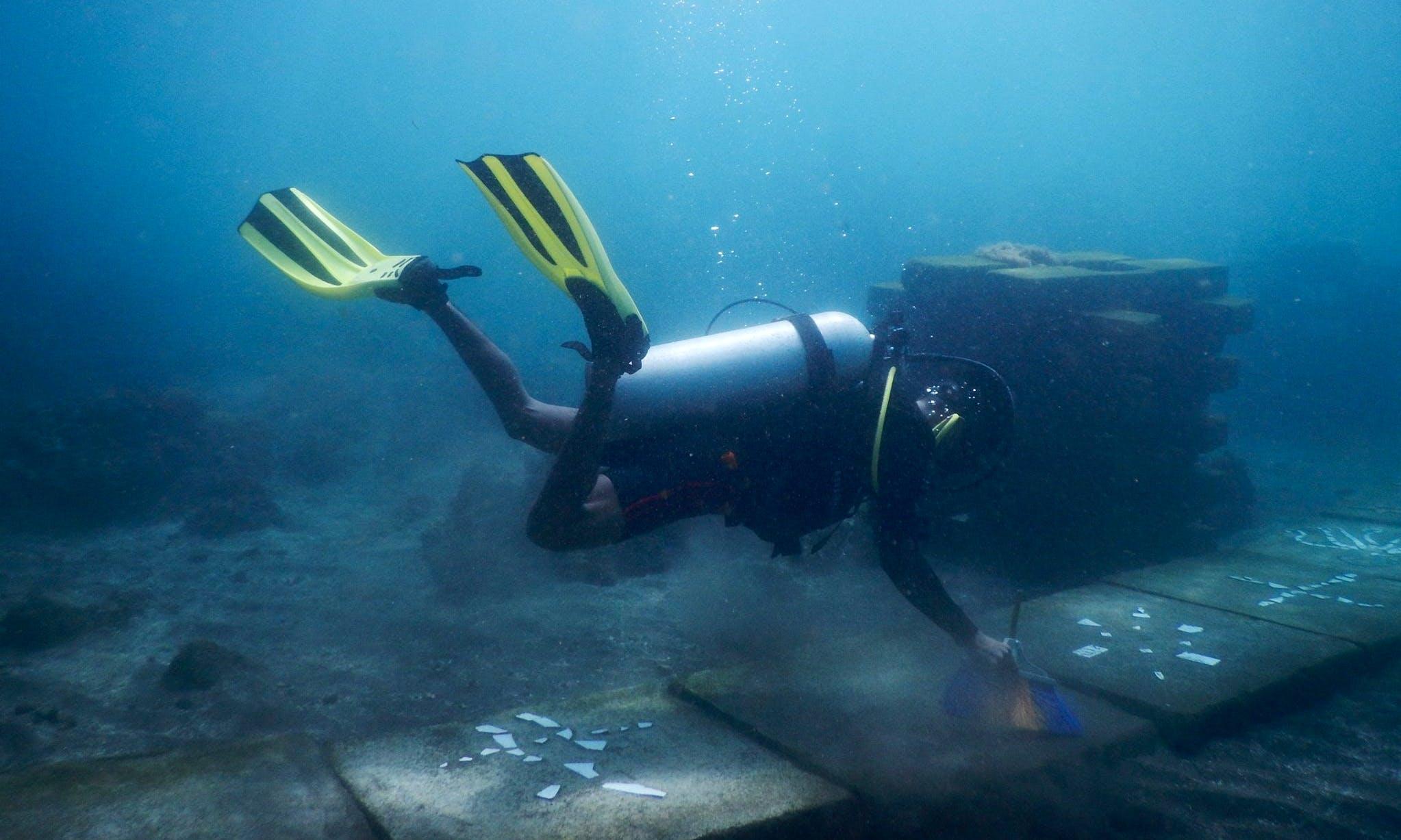 Enjoy Diving in Manado, Sulawesi Utara