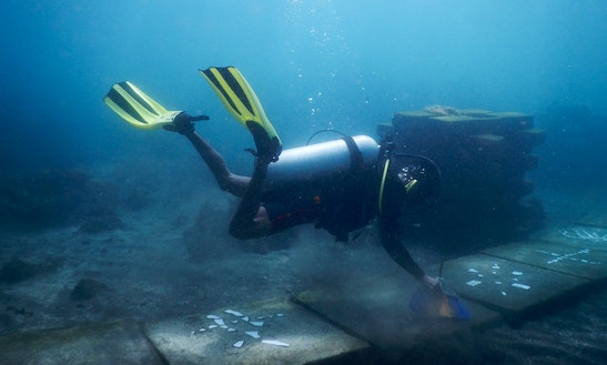 Enjoy Diving In Manado, Sulawesi Utara