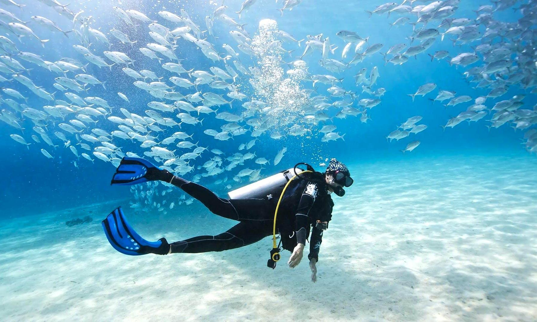 Enjoy Diving Lessons in Lochau, Austria