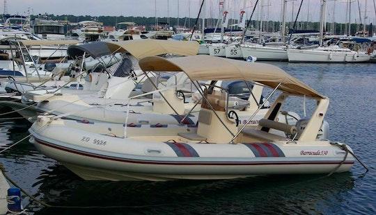 Rent 18' Barracuda 530 Rigid Inflatable Boat In Zadar, Croatia