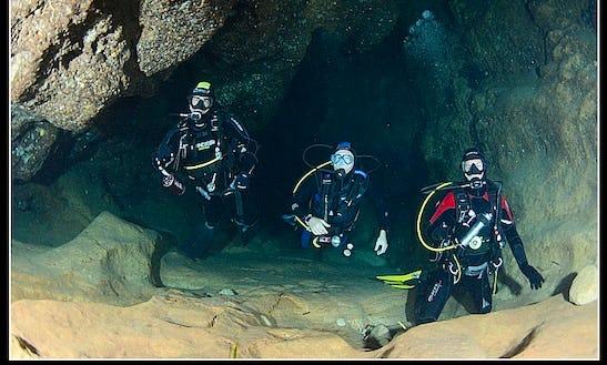 Enjoy Diving Trips & Courses In Alghero, Sardegna