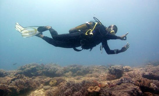 Enjoy Diving Trips & Lessons In Ukunda, Kenya