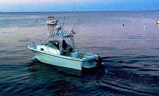 Enjoy Fishing In Qala, Malta On Sport Fisherman