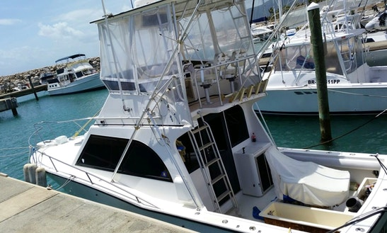 Motor Yacht Rental In Puerto Plata