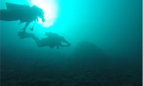 Diving In Khasab