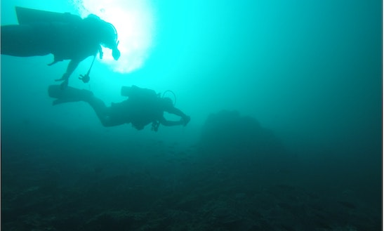 Diving In Khasab
