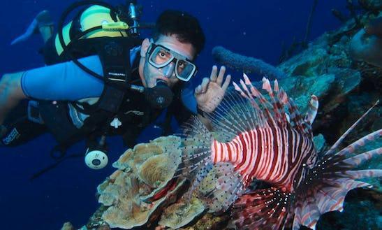 Enjoy Diving In Matanzas, Cuba