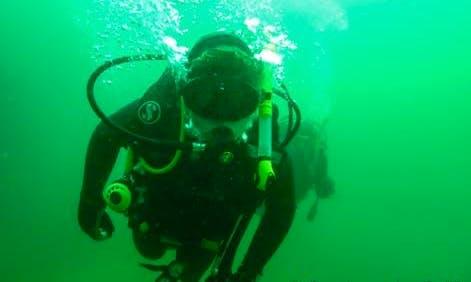 Scuba Diving Adventure in Western Cape, South Africa