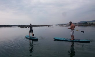 Stand Up Paddleboard Tour and Lesson in Esposende, Portugal