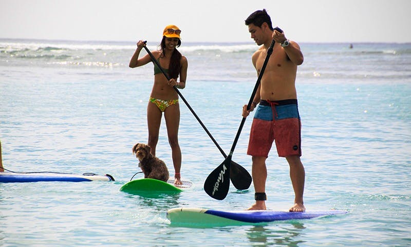 Stand Up Paddleboarding Lesson in Honolulu, Hawaii