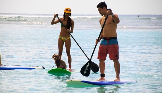 Stand Up Paddleboarding Lesson In Kailua