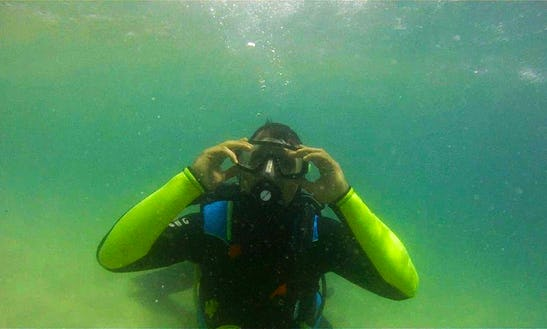 Exciting Scuba Diving Session With Kesia In Cape Town, South Africa