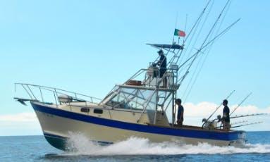 Enjoy Fishing in Ponta Delgada, Portugal on 32' Bayliner Sport Fisherman