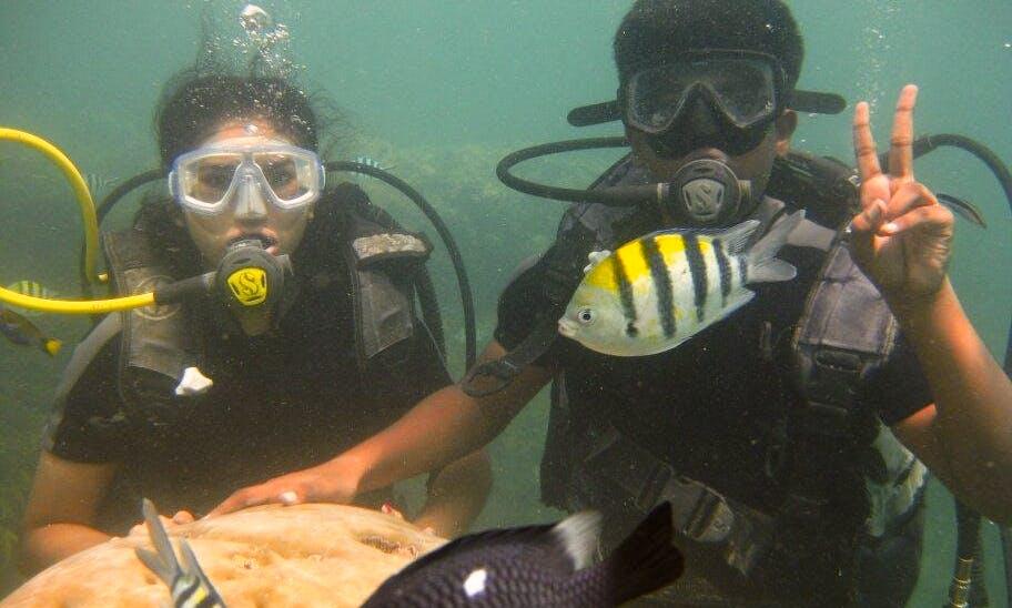 See Kuta Selatan's Underwater World!