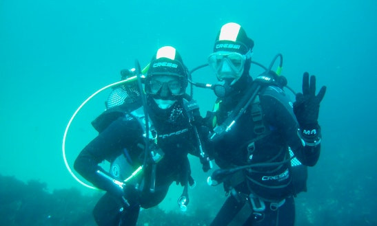 Enjoy Diving Courses In Peniche, Portugal