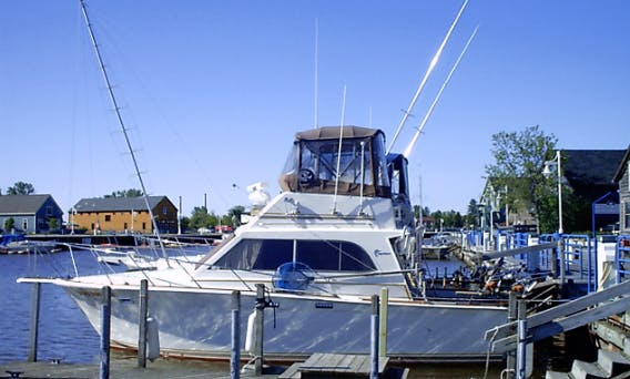 "Fishing Charter On 35ft ""Dead Reckon"" Sport Fishing Yacht In Sheboygan, Wisconsin"