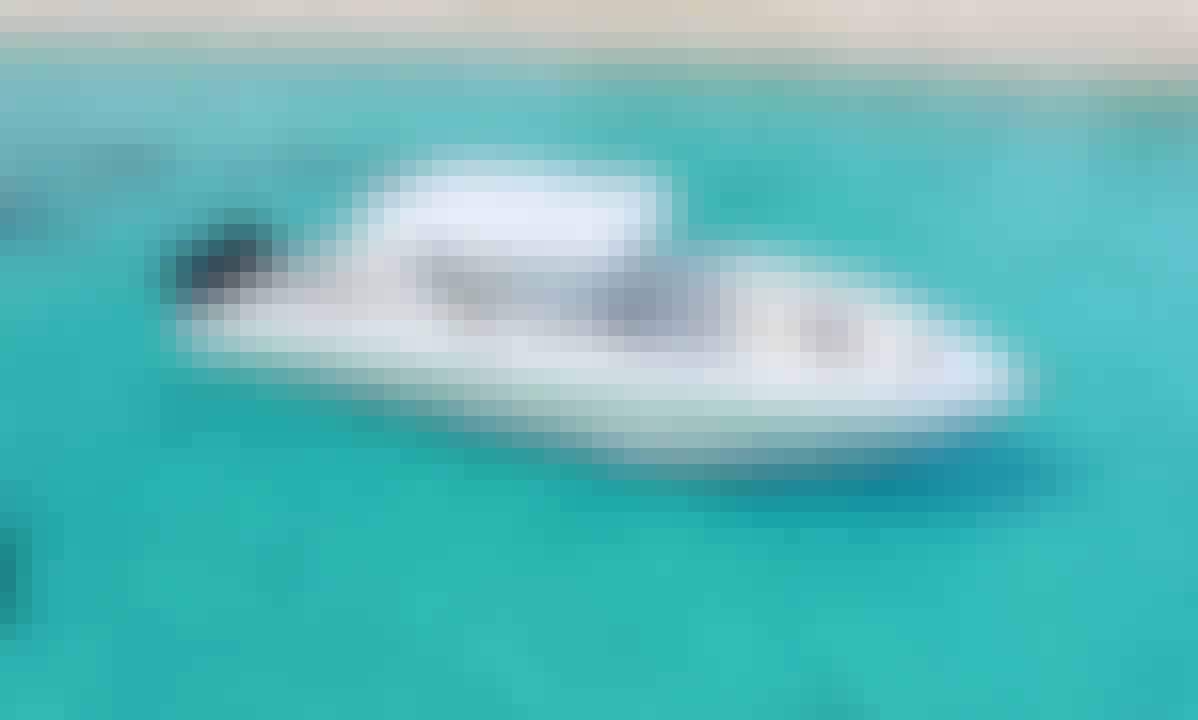 Robinson Speed boat and snorkeling tour