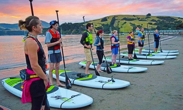 Stand Up Paddle board Lesson in Akaroa, New Zealand