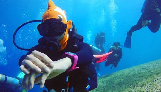Learn To Scuba In South Sinai Governorate, Egypt