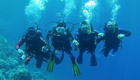 Diving Courses And Trips For Adults And Kids In South Sinai Governorate, Egypt