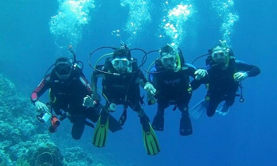 Enjoy Diving Courses In South Sinai Governorate, Egypt