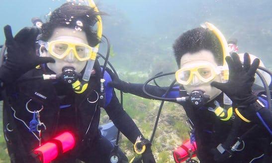 Enjoy Diving In Xinyi District, Taipei, Taiwan