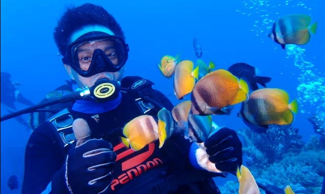 Enjoy Diving Courses in Beitun District, Taichung, Taiwan