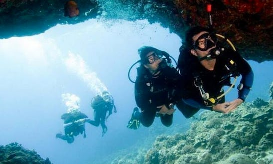 Enjoy Diving Courses In Breda, Netherlands