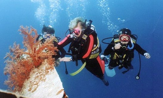 Enjoy Diving Courses In Red Sea Governorate, Egypt