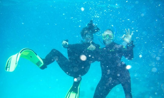 Enjoy Diving In Cairns City, Australia