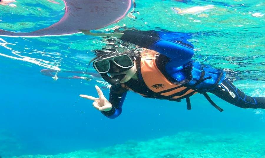 Enjoy Snorkeling in Lanyu Township, Taiwan