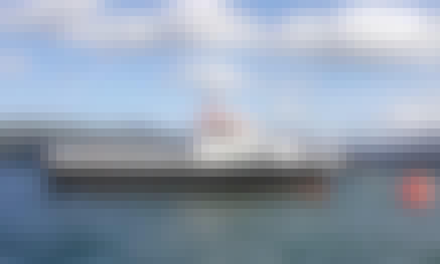 "Fishing Charter On 32ft ""Maverick"" Trawler In Wales, United Kingdom"