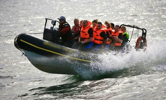 Charter A Rigid Inflatable Boat In Gdynia, Poland