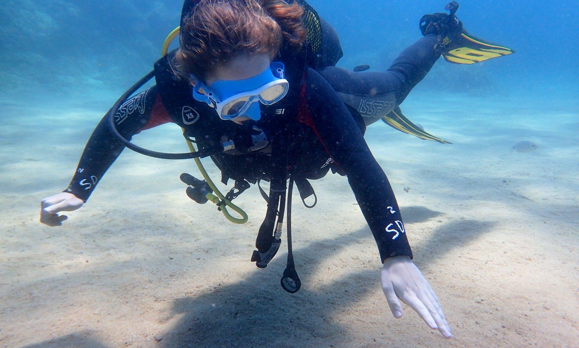 Discover Scuba Diving in Tossa de Mar, Catalunya