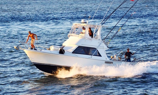 Enjoy Fishing In Main Beach Queensland, Australia On Mufasa Sport Fisherman
