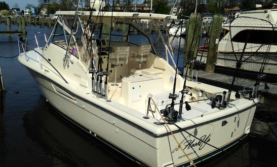 Sport Fisherman Fishing Charter In South Haven