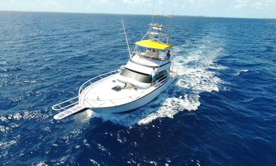 58' Striker Sport Fishing Charter In Nassau  Bahamas