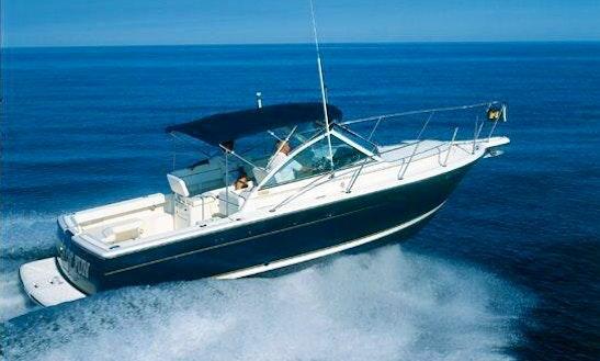 Charter A Motor Yacht In La Spezia, Italy